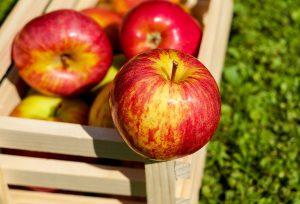 Ruttna äpplen från Apple